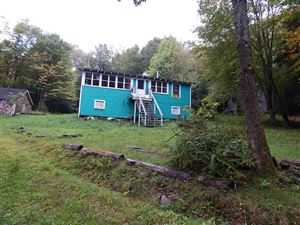 Photo of 28 Weiss Rd., Parksville, NY 12768 (MLS # 47584)