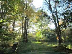 Photo of 402 Shore, Swan Lake, NY 12783 (MLS # 47586)