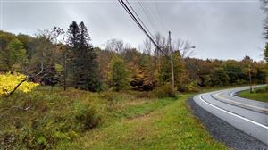 Photo of 170 Old Route 17, Monticello, NY 12701 (MLS # 47589)