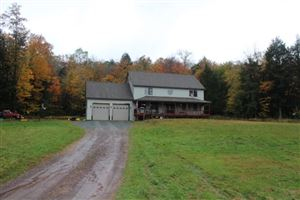 Photo of 121 forest drive, Willowemoc, NY 12758 (MLS # 47595)