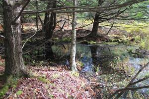 Photo of 00 benton hollow road, Livingston Manor, NY 12758 (MLS # 47627)