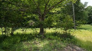 Photo of (Lot 4) State Route 55, Neversink, NY 12765 (MLS # 41800)