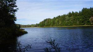 Photo of 19.1 Beaver Lake Road, Livingston Manor, NY 12758 (MLS # 43858)