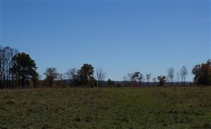 Photo of 115-2 Butrick Road, Ferndale, NY 12734 (MLS # 43882)