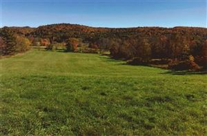 Photo of 2715 STATE ROUTE 17B, Cochecton, NY 12726 (MLS # 45927)
