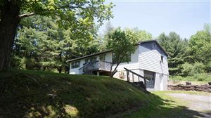 Photo of 1442 NYS Hwy 17B, White Lake, NY 12786 (MLS # 43966)