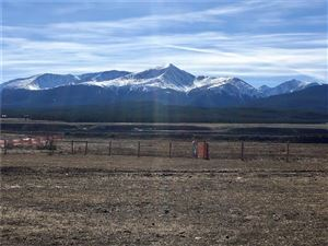 Photo of 10 County Road 44, LEADVILLE, CO 80461 (MLS # S1007157)