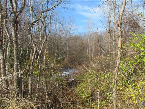 Photo of Marquette Woods Road, Stevensville, MI 49127 (MLS # 10057574)