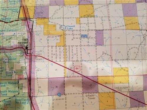 Photo of Off Colorado Rd, Tres Piedras, NM 87577 (MLS # 99293)