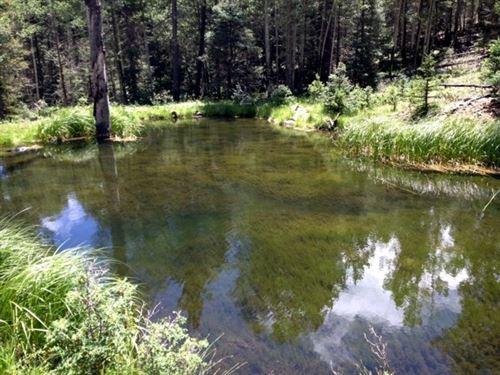 Photo of 194.468 Acres Black Lake, Black Lake, NM 87710 (MLS # 100685)