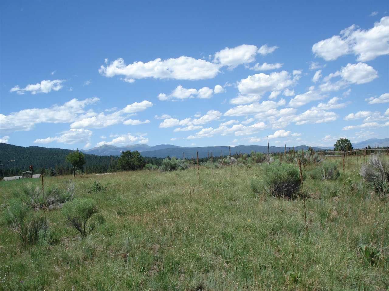 Photo for Lot 198 Preston Trail, Angel Fire, NM 87710 (MLS # 100751)