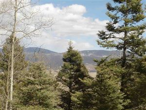 Photo of Lot 19 Taos Pines Ranch Subdivision, Angel Fire, NM 87710 (MLS # 98816)