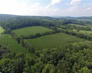 Photo of LOT 002 PEPPERMINT RD, COOPERSBURG, PA 18036 (MLS # 7038177)