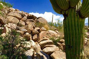 Photo of 1305 W Tortolita Mountain Circle, Oro Valley, AZ 85755 (MLS # 21707566)