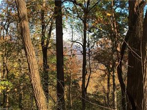 Photo of 00 Hogback Mountain Road #Lot 64, Tryon, NC 28782 (MLS # 3340042)