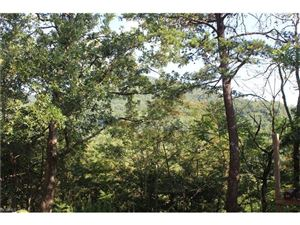 Photo of 140 Baird Cove Lane, Asheville, NC 28804 (MLS # 3305044)