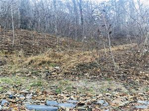 Photo of 25 Soapstone Creek Drive #25, Arden, NC 28704 (MLS # 3342111)