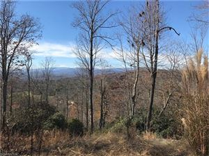 Photo of 215 Crossvine Trail, Hendersonville, NC 28739 (MLS # 3339114)
