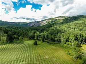 Photo of 52 Lonesome Road, Sapphire, NC 28774 (MLS # 3300153)