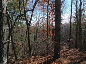 Photo of 2527 Wolf Pit Road #29, Morganton, NC 28655 (MLS # 3340153)