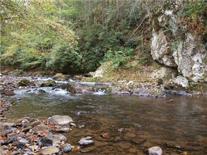 Photo of 40 +/- Acres Hwy 212 Highway, Marshall, NC 28753 (MLS # 3325207)