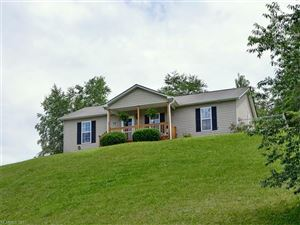 Photo of 19 Juno Drive, Asheville, NC 28806 (MLS # 3300208)