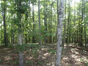 Photo of Lot 12 Boy Scout Road, Rutherfordton, NC 28139 (MLS # 3302230)