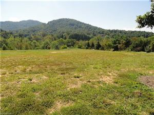 Photo of 3 Snap Dragon Court #9, Asheville, NC 28804 (MLS # 3321234)