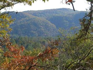 Photo of 3851 East Fork Road, Brevard, NC 28712 (MLS # 3227254)