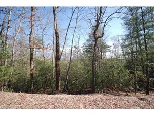 Photo of 157 Springhouse Trail #L11, Brevard, NC 28712 (MLS # 3309256)
