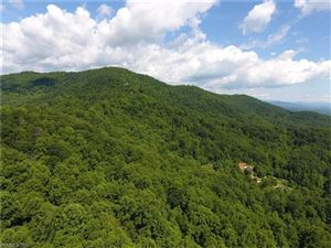 Photo of 81 +/- Acres Dandelion Drive, Leicester, NC 28748 (MLS # 3282270)