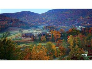 Photo of Lot 2020 Deep Gap Farm Road, Mill Spring, NC 28756 (MLS # 3270274)