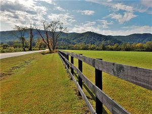 Photo of 0 Coventry Drive, Brevard, NC 28712 (MLS # 3122281)