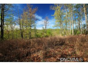 Photo of 10 Red Maple Lane, Pisgah Forest, NC 28768 (MLS # NCM561287)