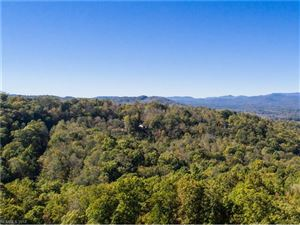 Photo of 169 Summit Hill Road #1517, Hendersonville, NC 28791 (MLS # 3344298)