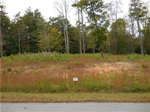 Photo of 0 Crystal Cove Drive #2, Hendersonville, NC 28739 (MLS # 3329318)