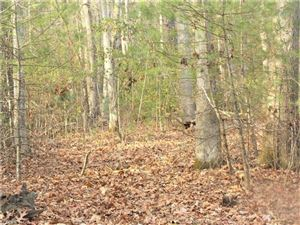 Photo of 0 Crosswick Lane #Tract 1- 1.67 acres, Hendersonville, NC 28739 (MLS # 3340320)