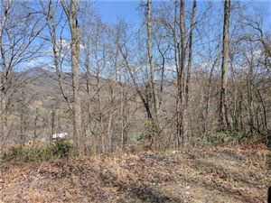 Photo of Lot #19 Flowing Hills Drive, Clyde, NC 28721 (MLS # 3317362)