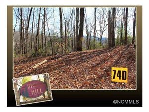 Photo of 74D Laurel Thicket, Brevard, NC 28712 (MLS # NCM571365)