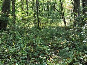 Photo of 00 Hoot Owl Ridge, Waynesville, NC 28786 (MLS # 3323368)