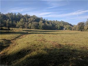 Photo of TBD Ted Smith Road, Old Fort, NC 28762 (MLS # 3323369)