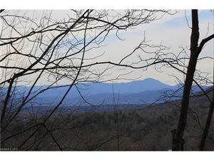 Photo of 459 Sandy Flat Mountain Road #1, Fletcher, NC 28732 (MLS # 3343369)