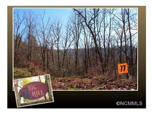 Photo of 77 Laurel Thicket, Brevard, NC 28712 (MLS # NCM571376)