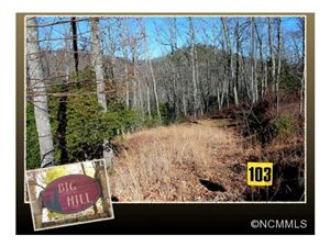 Photo of 103 Laurel Thicket, Brevard, NC 28712 (MLS # NCM571382)
