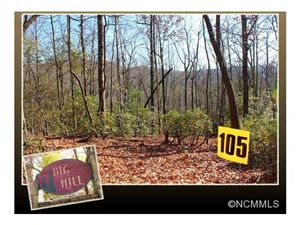 Photo of 105 Green Hollow Lane, Brevard, NC 28712 (MLS # NCM571388)