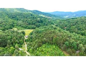 Photo of 99999 Mundy Cove Road, Weaverville, NC 28704 (MLS # 3286390)
