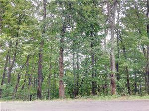 Photo of 169 Bobcat Lair Drive #9, Mills River, NC 28759 (MLS # 3309400)