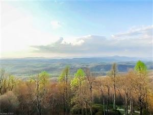 Photo of 5042 Hogback Mountain Road, Tryon, NC 28782 (MLS # 3309402)