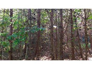 Photo of TBD Glen eagles Lane #170, Mills River, NC 28759 (MLS # 3314409)
