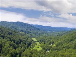Photo of 0 Moody Cove Road, Weaverville, NC 28787 (MLS # 3315421)